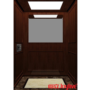 small villa lift smart elevator social elevators