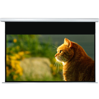 300 inch 16:9 business partner for projector screen