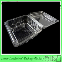 Biodegradable clear blister disposable sushi tray