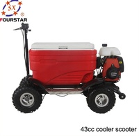 cheap 50CC 4 Stroke gas powered cooler scooter