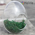 Glass egg indoor decorative plant pot holder for home decro