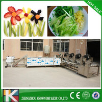 frozen vegetables and fruit processing line machinery