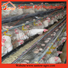 2016 HOT SALE full automatic big scale chicken cages