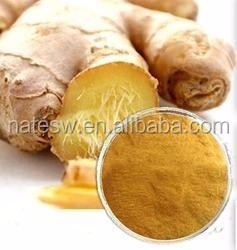 high purity pure ginger extract 5% gingerol for ginger tea