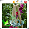 Straight raw materials/ decorative bamboo plants
