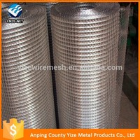 New design Best selling 1/4 x 1/4 1/2x1/2 3/8x3/8 5/8x5/8 galvanized welded wire mesh
