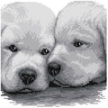 Lovely Cute dogs designs for kids DIY cross stitch with 100% cotton fabric