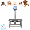/product-gs/4kw-pet-x-ray-unit-for-small-animal-with-table-x-ray-60286274821.html