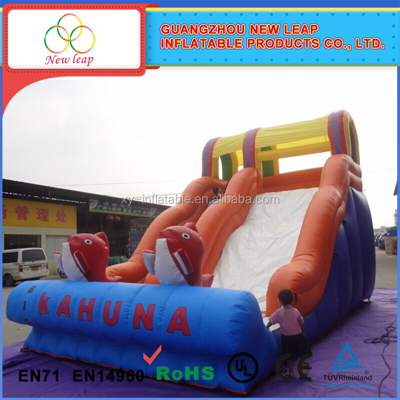 High quality and popular 2015 leisure activities stock giant extreme rush inflatable dry slide for hot sale