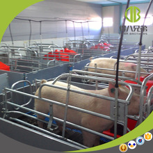 Pig Farm Equipment Farrowing Crates with PVC Panel