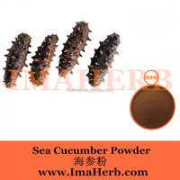 2016 Hot Competitive gamat (sea cucumber) extract sea cucumber extract