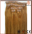 Wholesale 220g Brazilian Virgin Remy 30 inch Clip in human hair Extensions