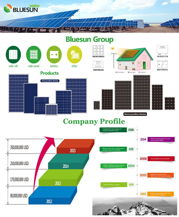 Best price 12v 30a pcb charge controller from Bluesun factory for solar system