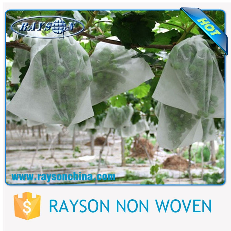 hot selling fruit growing protection bag