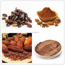 Factory Supply Free Sample High Quality Cocoa Extract Powder