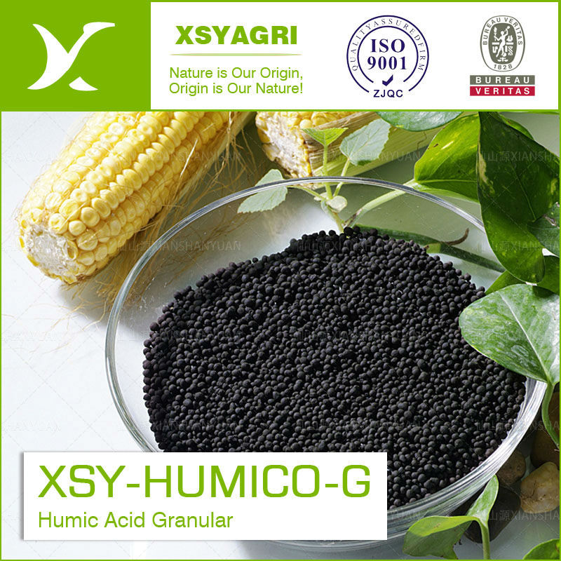 Natural Organic Humic Acid Granules from Leonardite Humic Acid for Agriculture Fertilizer