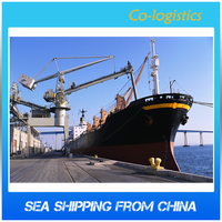Professional Ocean Freight Quote to USA Service