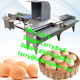 automatic egg grading packing machine/egg grader for packing/10000pcs/h egg grading machine