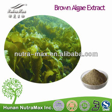 100% Natural Brown Algae Extract,Brown Algae Extract Powder,Brown Algae Extract Supplier Fucoxanthine 5% ~50% ,Fucoidan 80%~95%