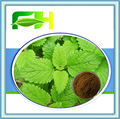 100% Natural Lemon Balm Extract/1%-5% Flavonoids/3%, 5%, 10% Rosmarinic Acid