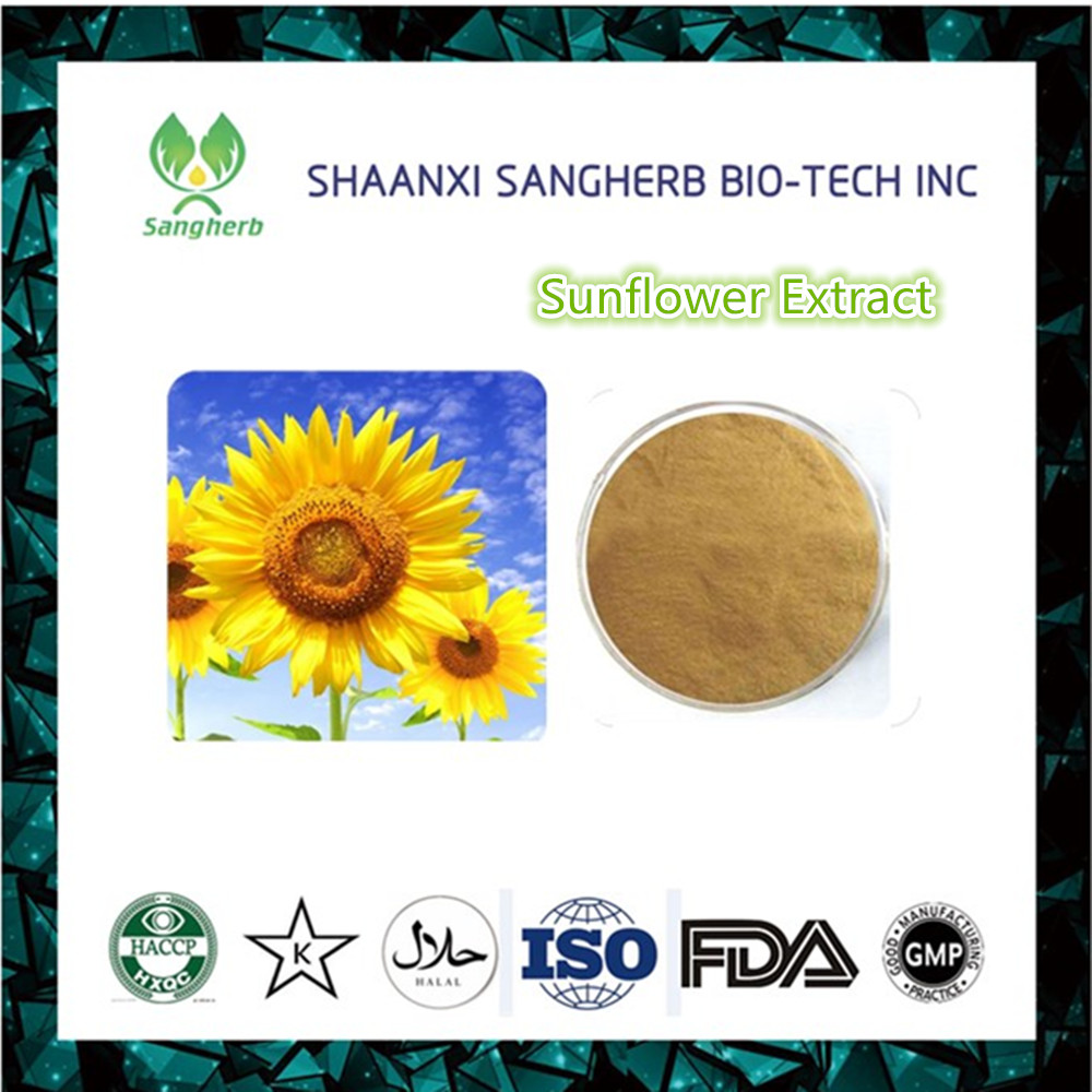 Factory supply Water-solubl Sunflower Seed Extract/ Sunflower Oil Powder/Helianthus annuus Extract
