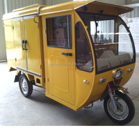 High Quality CE Carbin Cargo Electric Tricycle 650W/800W/100W