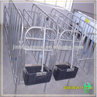 animal cage stainless steel pig stall pig indival stall cheap price long time working steel tube stalls for pig cages