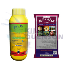 King Quenson Hot Sale Agricultural Chemical Pesticides Systemic Fungicide Carbendazim