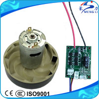 China Factory 12V 36V Small Brushless BLDC Motor for Portable Vacuum Cleaner (MLWS-01G)