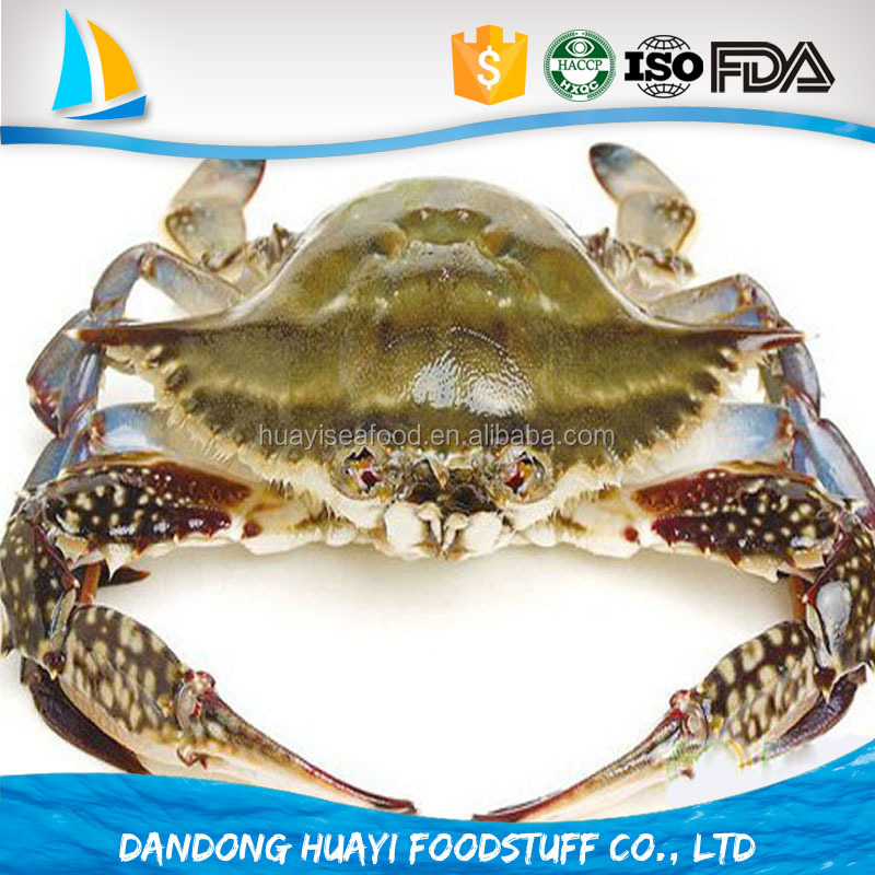 IQF FROZEN BLUE SWIMMING CRAB FOR SALE