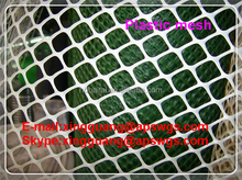 plastic mesh 10mm made in China