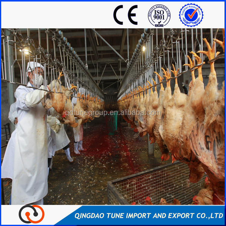 2016 chicken slaughtering equipment line/automatic chicken slaughtering machine
