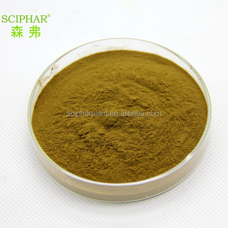 ISO HACCP Kosher HALAL GMP factory Natural High quality green tea extract tea saponin