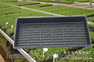 Factory Supply Hydroponic Seed Starting Flat Trays without Drain Holes