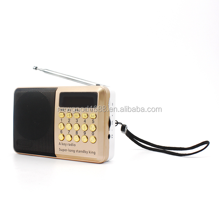 New products with the special OEM gold color can be used as USB speaker TF card speaker and mini fm radio