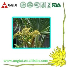 high quality Saw Palmetto fruit extract with fatty acid