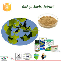 Promote blood circulation HACCP KOSHER FDA cGMP total flavone glycoside 24% ginkgo extract ginkgo biloba extract supplier