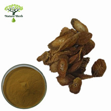 Provide Pure Natural Burdock root extract/Great Burdock Achene Extract