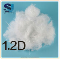 Recycled micro denier polyester fiber for 1.2D TO 3D