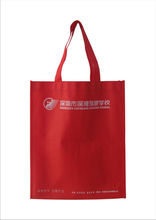 Popular and Lovely Cute Cartoon pp Non Woven Bags,pictures printing non woven shopping bag