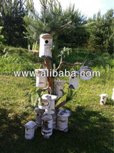 Birch bird cages