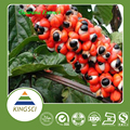 Pure natural best quality guarana seed extract caffeine 10%,20% BY HPLC