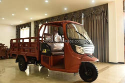 DAYANG BRAND 3 Wheel Car for Sale of Petrol Tricycle