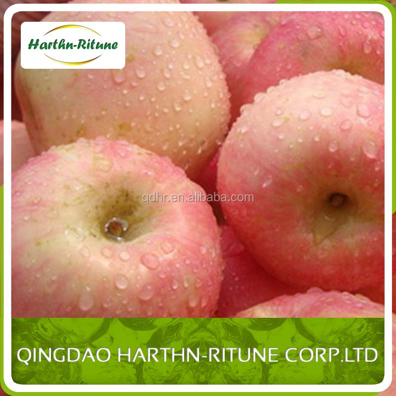 best price fuji red/green mature apple