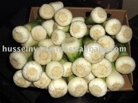 Fresh Quality Egypt Garlic