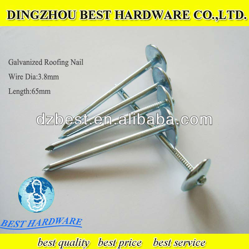 screw coil roofing nails