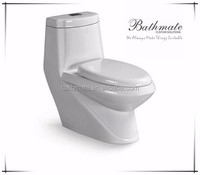 Alibaba building materials sanitary ware dual-flush ceramic wc toilet with cheap price