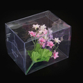 fashion custom made wholesale clear plastic cosmetic box