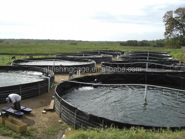 Aquaculture tanks for fish farming in south america buy for Fish farming tanks