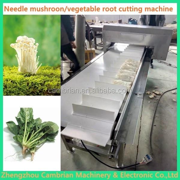 needle mushroom root cutting machine (11)